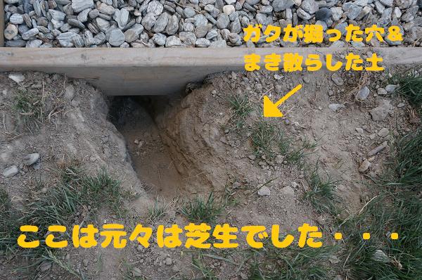 gaku (87-5)