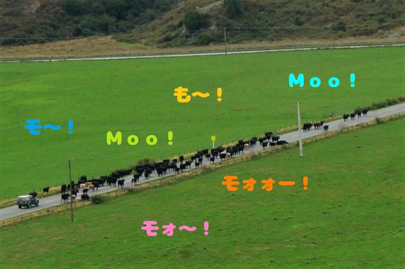 gaku (104-3)
