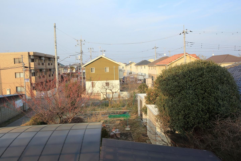 ブログ 我が家の菜園の剪定前の風景.jpg