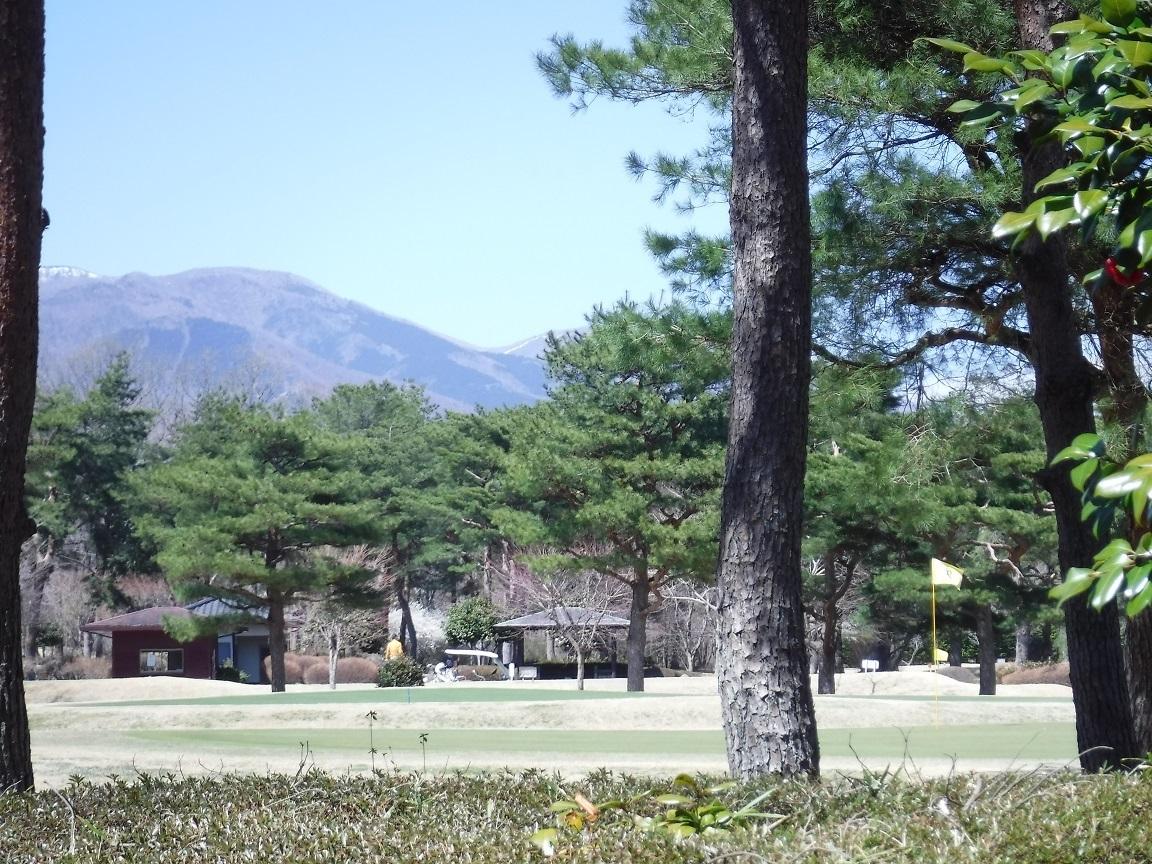 ブログ 山の雪は消え始めてゴルフ日和.jpg