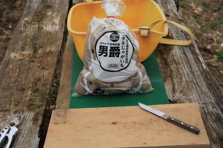 ブログ  4 02 菜園、ジャガイモの植え付け.jpg