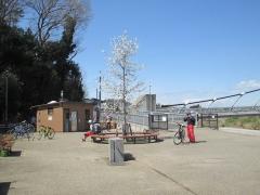 20180324-11:52境川遊水池公園
