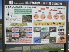 20180324-11:57境川遊水池公園