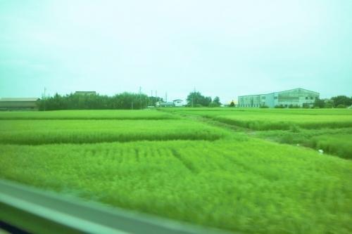 IMG_0625 青田