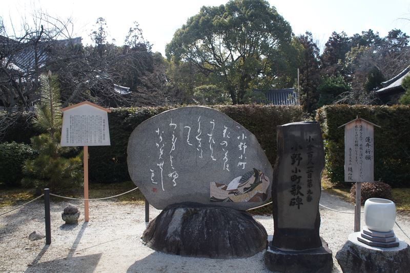 20180218ShinsuiS0085s.jpg