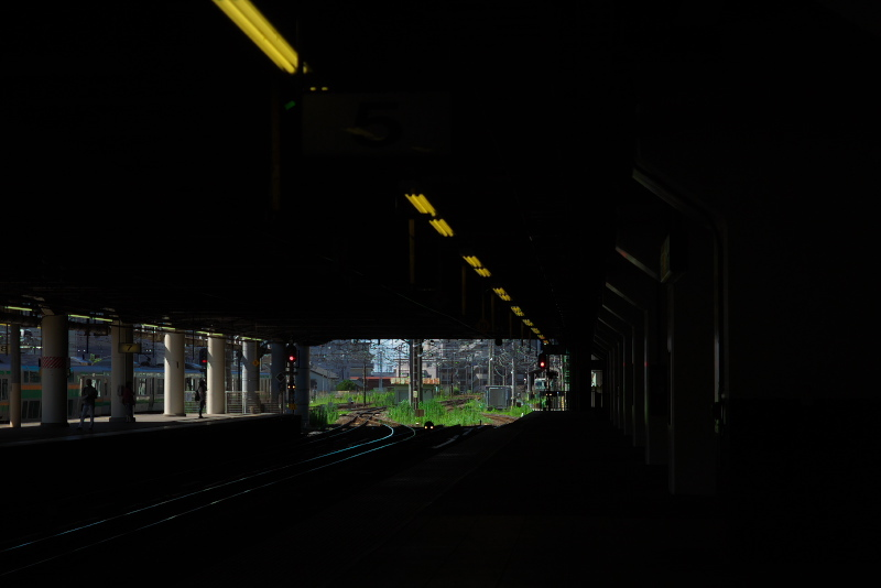 P1647697.jpg