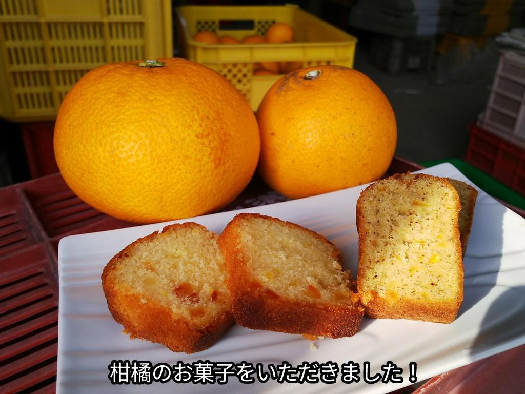 柑橘のお菓子をいただきました!