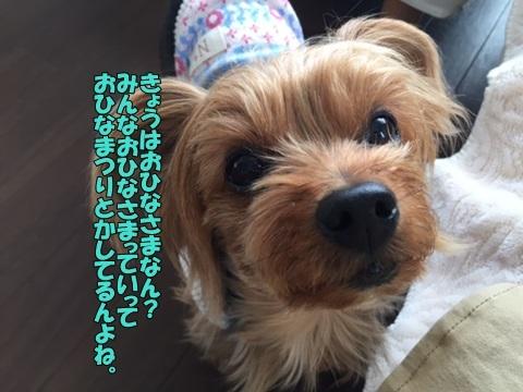 image118030301.jpg
