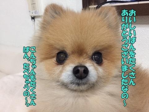 image318030801.jpg