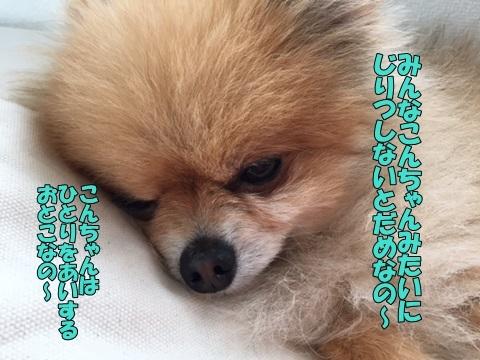 image318032201.jpg