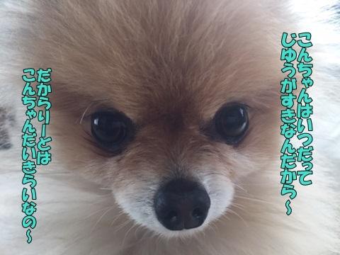 image718033001.jpg