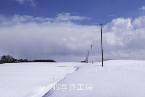 _DSY5211.jpg