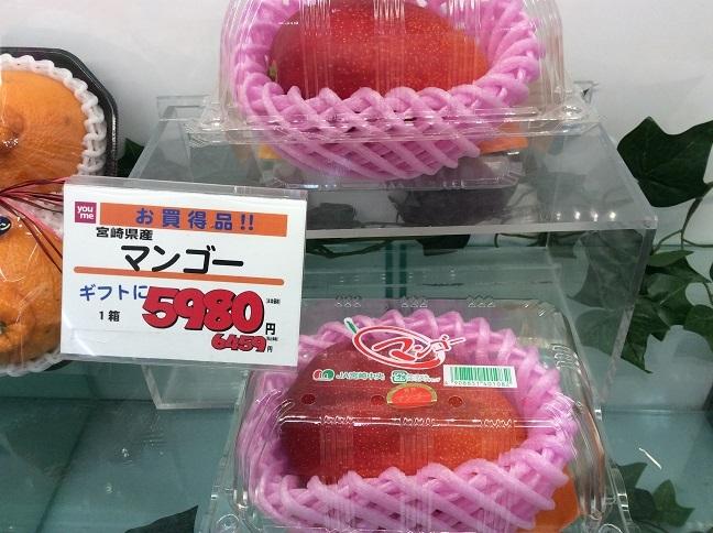 kikoku_mango.jpg