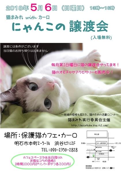 譲渡会5月ポスターブログ用