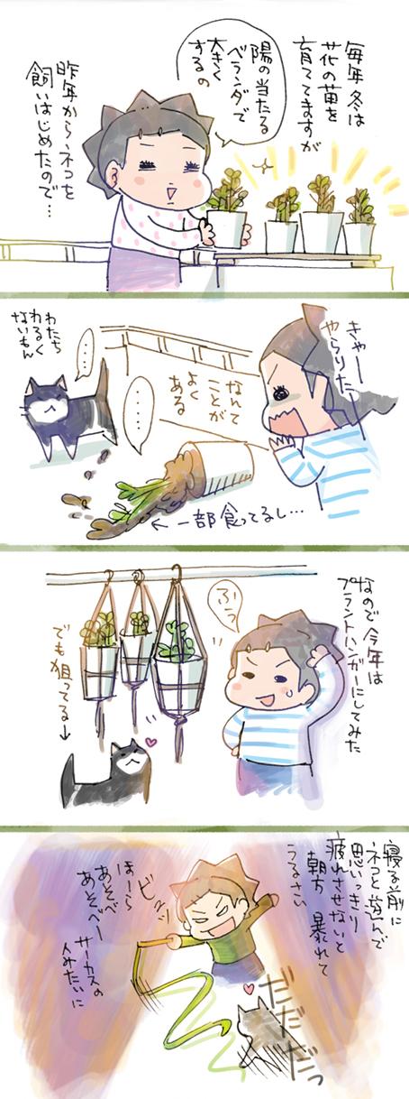 ネコと植物