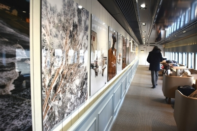 14号車 新潟県の写真 現美新幹線