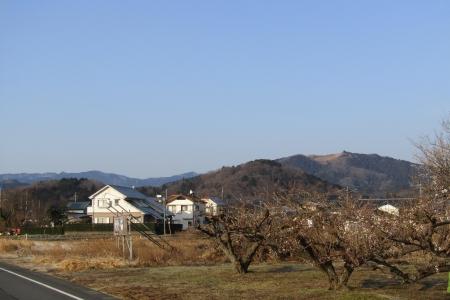 180224愛宕山~金比羅山~弓立山~弘法山 (3)s