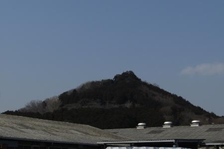 180224愛宕山~金比羅山~弓立山~弘法山 (51)s