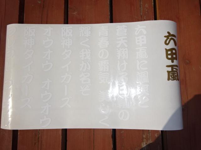 DSC01634 (2)