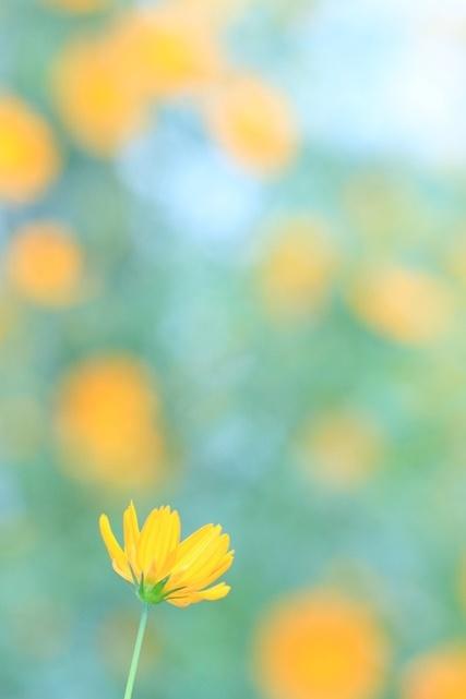 IMG_9400 - コピー