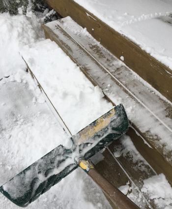 snow01221810.jpg