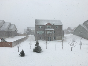 snow03051802.jpg