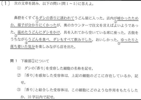 udon2.jpg