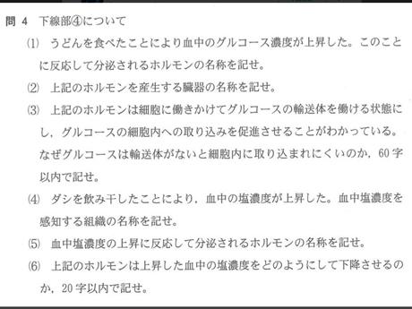 udon5.jpg