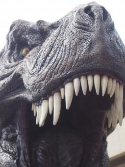 dinosaur78386769.jpg