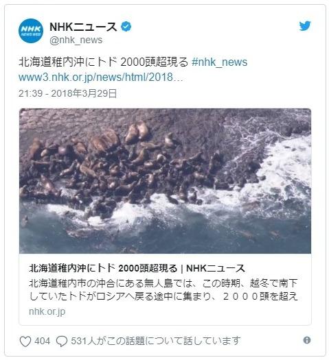 【北海道】稚内沖にトド「2000頭」以上が現れる!