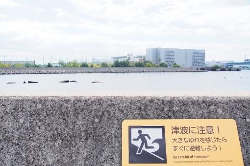 tsunami678768.jpg