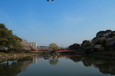 20180329_勝盛公園IMG_2910b30-1℃