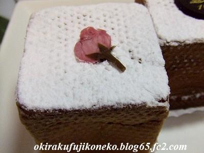 ダロワイヨ シューキューブ桜1