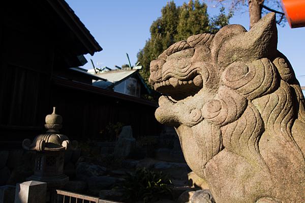 羊神社獅子