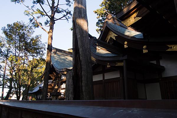 味鋺神社社殿横から