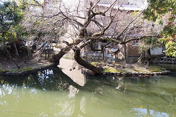 川原神社池の社