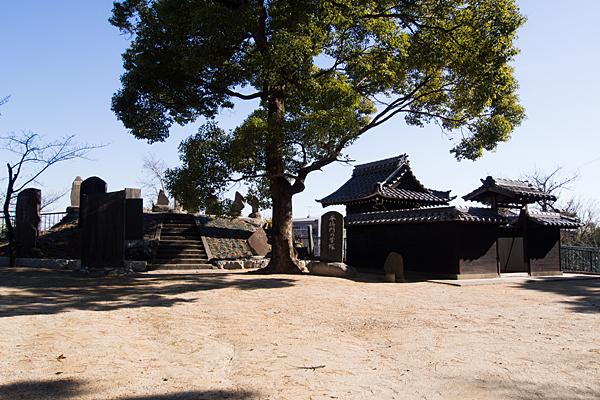 丹八山公園の風景