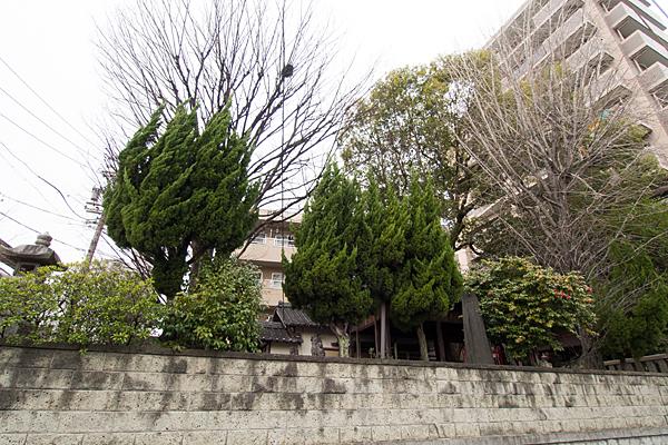 豊若宮八幡社全景
