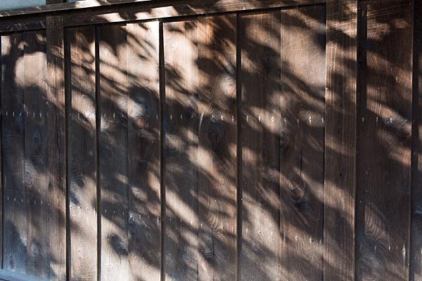 桃厳寺板塀の光と影