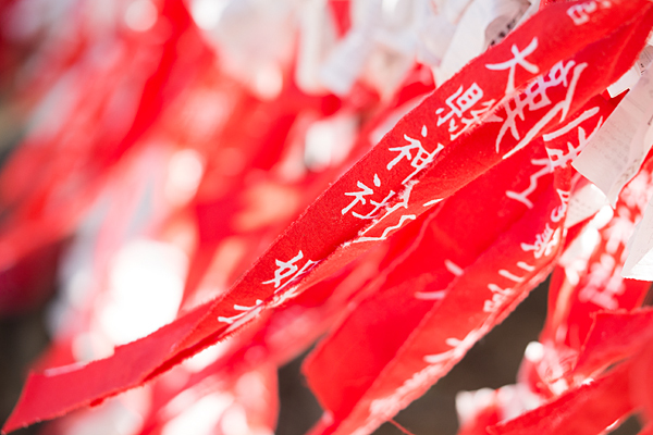 大縣神社しだれ梅赤い布