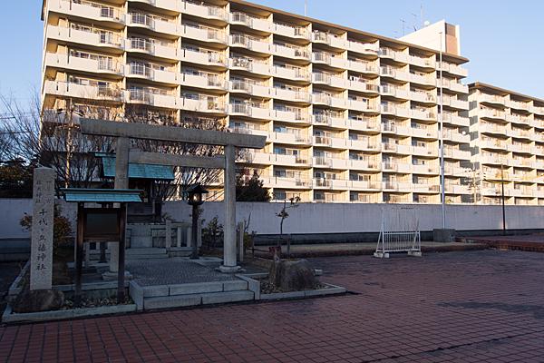 千代ヶ丘椿神社と団地