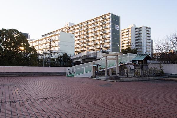 千代ヶ丘椿神社全景