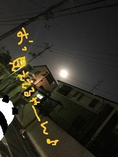 81_20180201094000d04.jpg