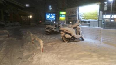 1-22雪 (1)