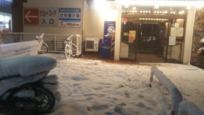 1-22雪 (3)