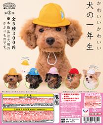 dogcap_dp.jpg