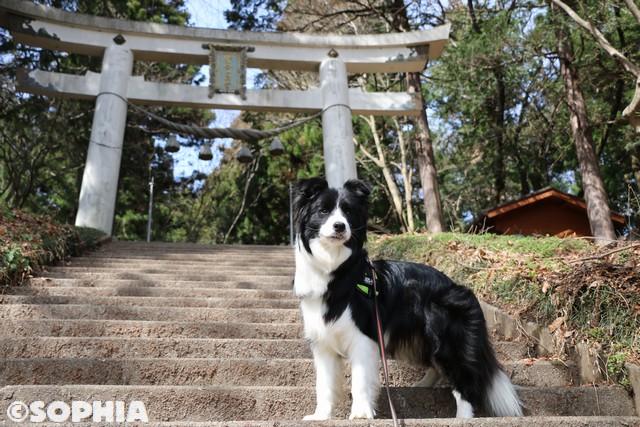 寶登山神社奥宮