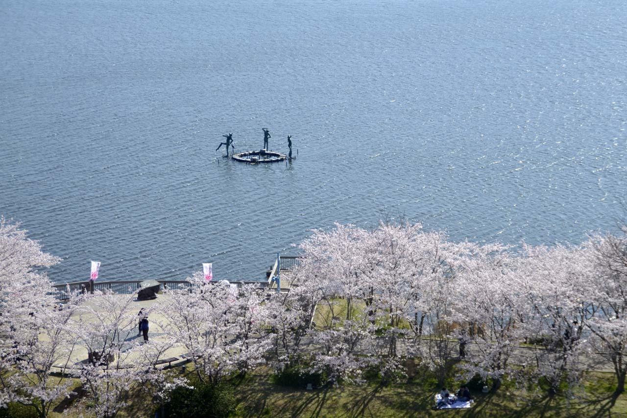 _D709938近所の桜