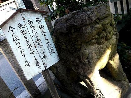 yasakajinjaDCIM0321.jpg