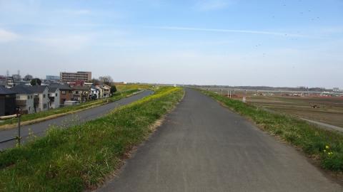 荒川右岸を走りました。下の道路がいやなのでそのまま走っていたら…。